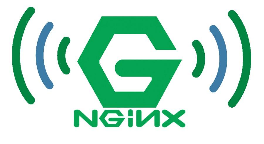 nginx.jpg