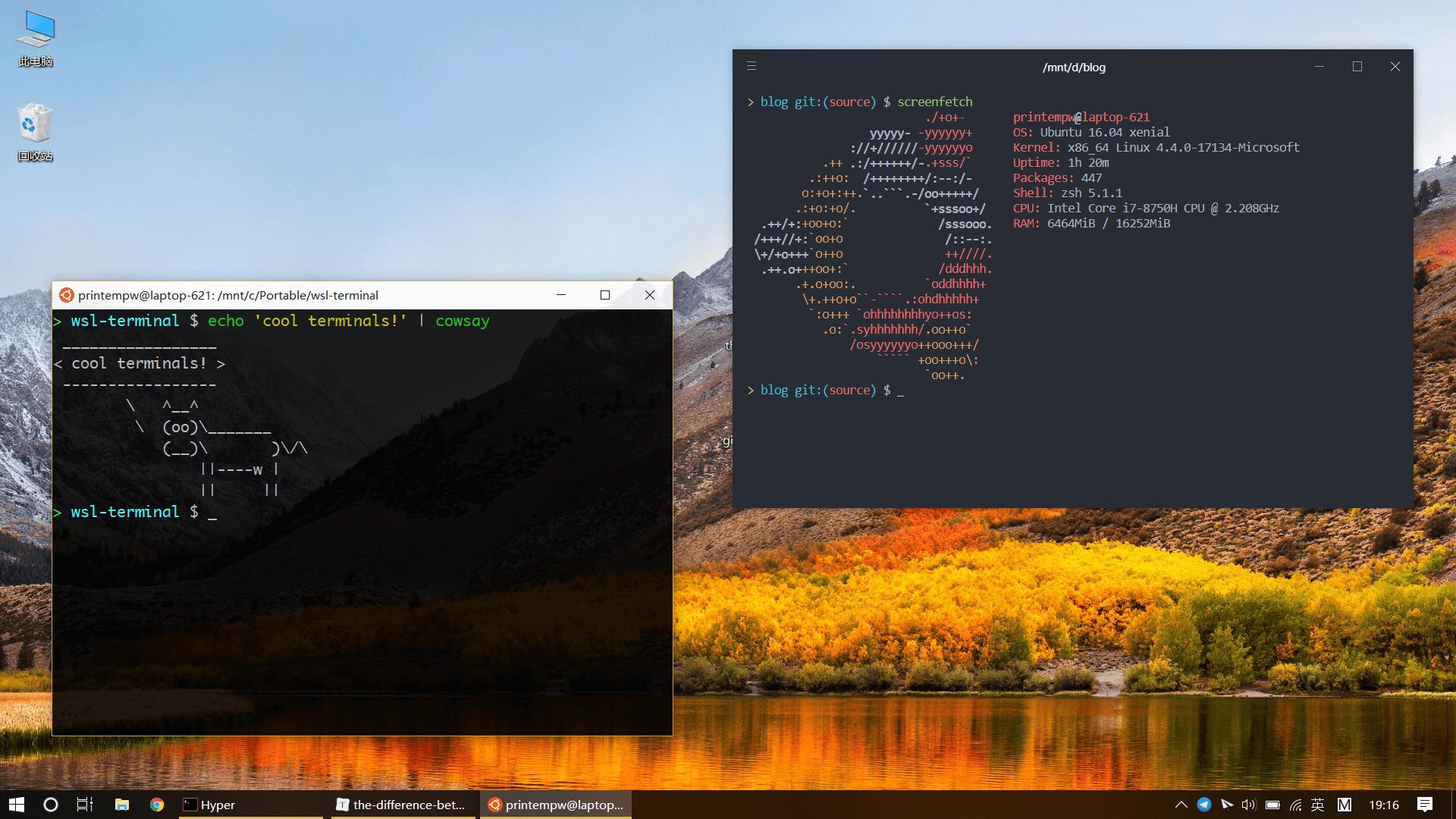 我正在使用的终端模拟器:Hyper 与 wsl-terminal