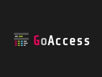 goaccess2.jpg