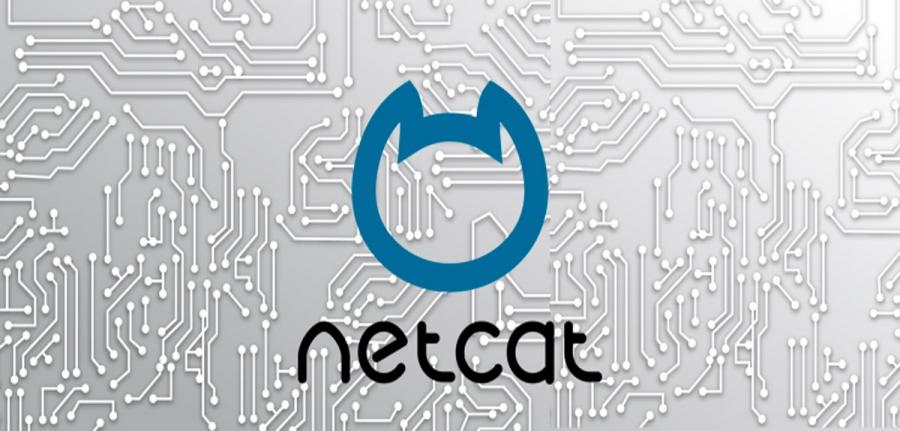 Netcat_pzdknk.jpg